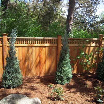 Redwood Fence